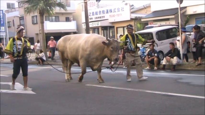 どんどん祭り(闘牛パレード)