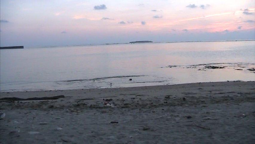 早朝の東区海岸