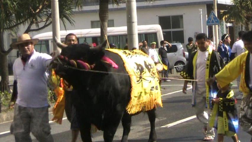 どんどん祭り「闘牛パレード」