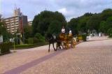 馬事公苑の馬車