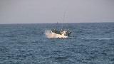 小型漁船時化の出漁