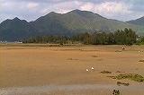 寝姿山のヘラサギ