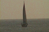 ヨットの帆張り