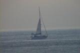 ヨットの季節