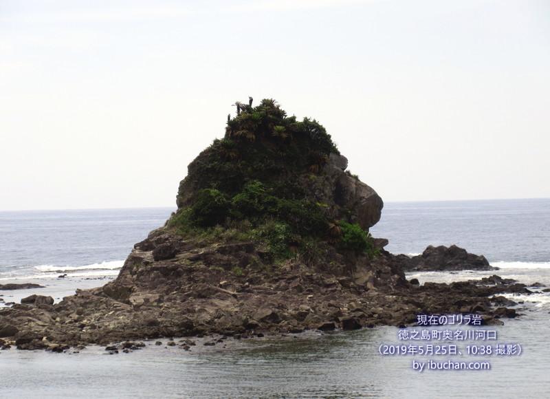 現在のゴリラ岩(旧ライオンの咆哮と言われた岩)