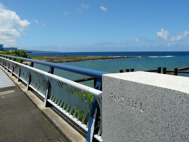 西郷橋から犬田布岬を望む