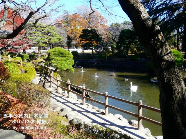 馬事公苑内日本庭園1