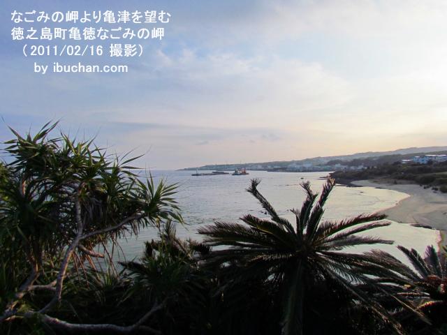 なごみの岬より亀津を望む