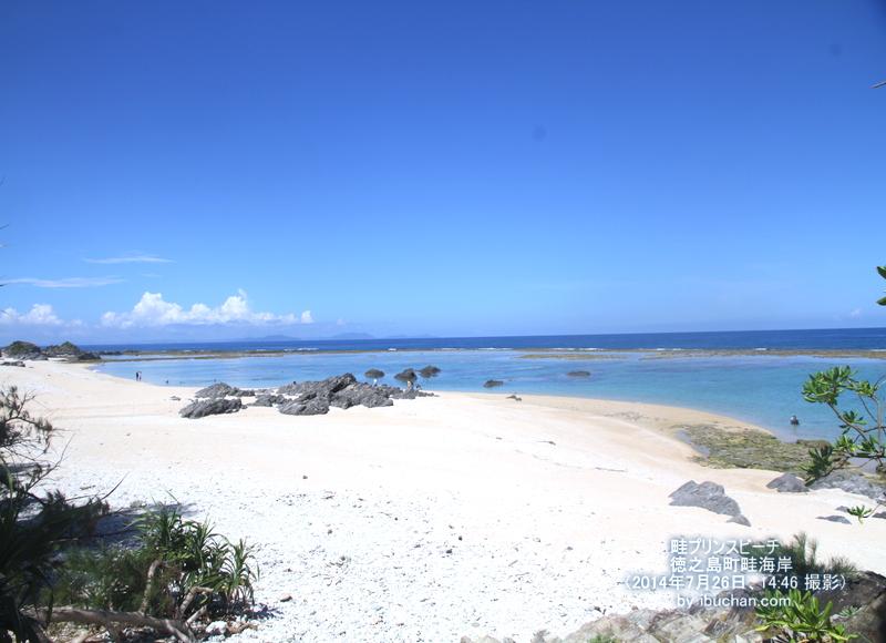 プリンスビーチの風景画