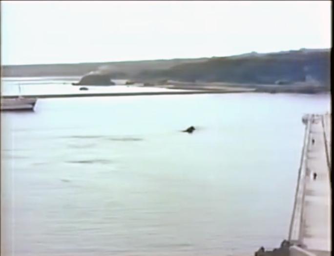 S35年当時の亀徳港
