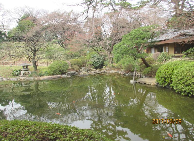 園内の日本庭園