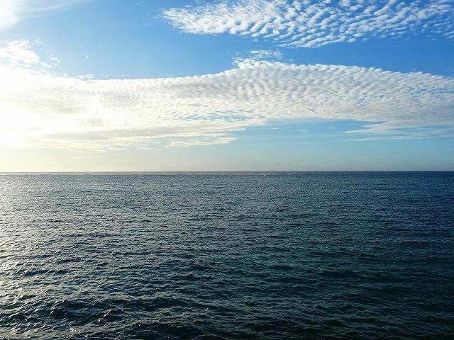 亀津海岸1